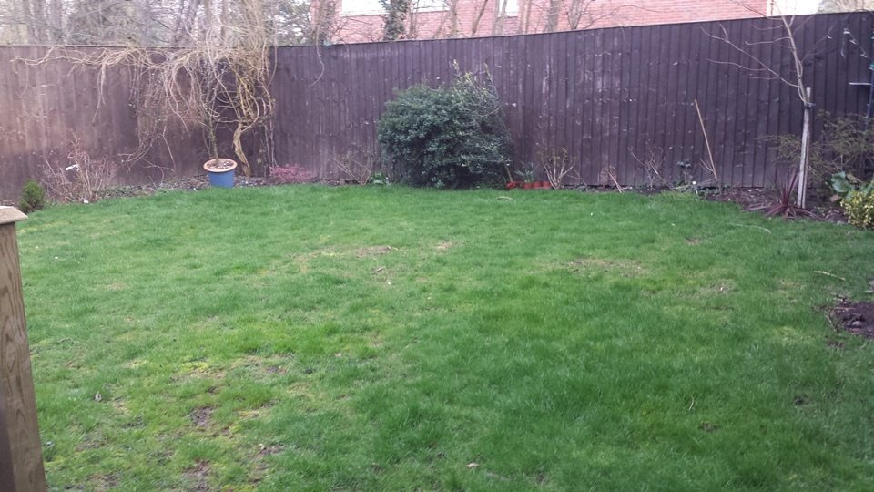 Garden Miantenance Example - Before Work Started