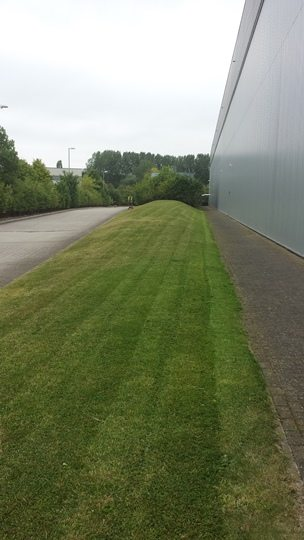 image showing tge grass verge of a municiple building after maintenance