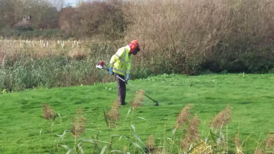 Grounds Maintenance - Strimmer